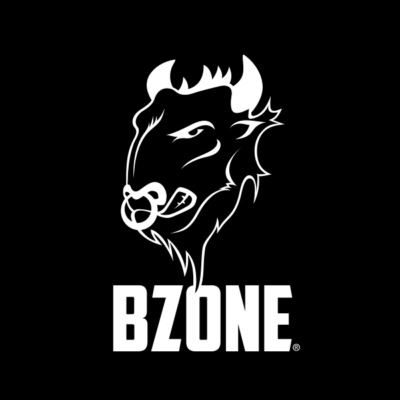 BZONE – Web Designer